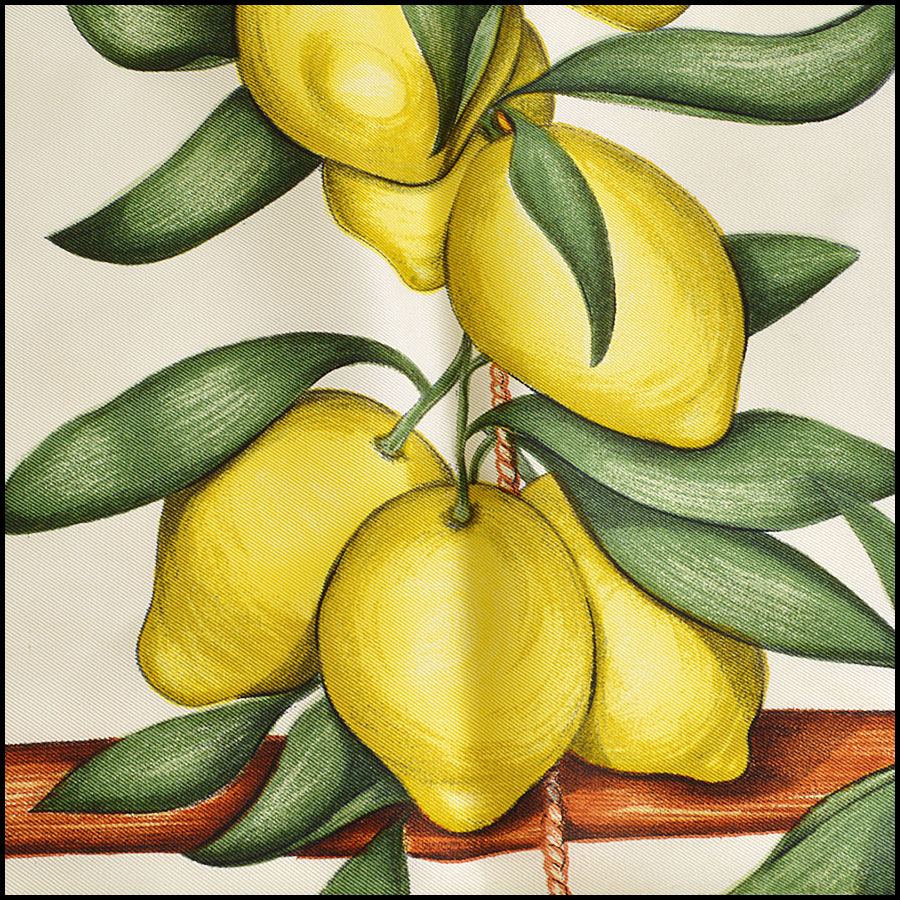 RDC8623 Hermes Ivory Citrus Fruits Stand Scarf close up