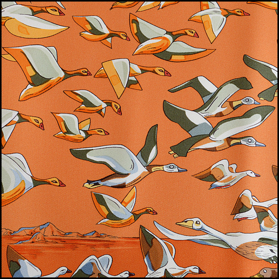 Hermes Libres Comme L'Air Silk Scarf Close Up